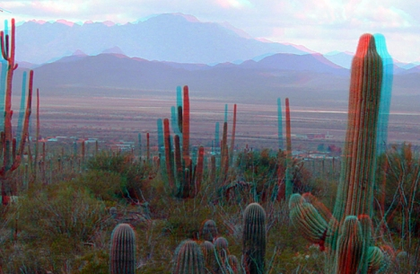 Saguaro National Park em fotografia 3D (Foto: U.S. Department of the Interior/Wiki Commons/Divulgação)